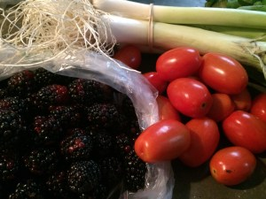 My purchases from Springdale: blackberries, baby Romas (or Juliettes), and leeks.