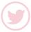 boton twitter circulo