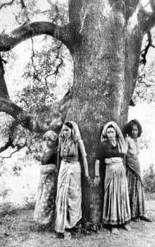 Sunderlal Bahuguna in Patna (2/4)