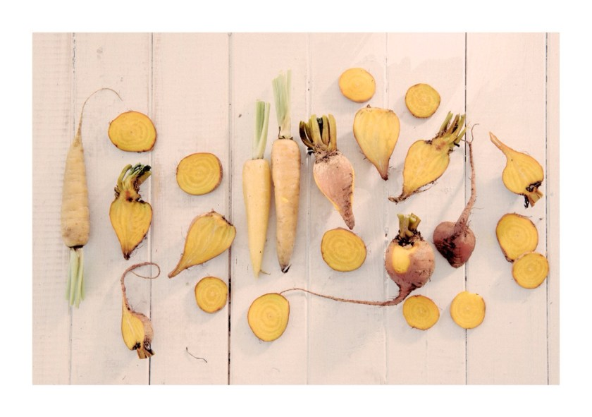 Yellow Beets & Carrots - beautifully food styled