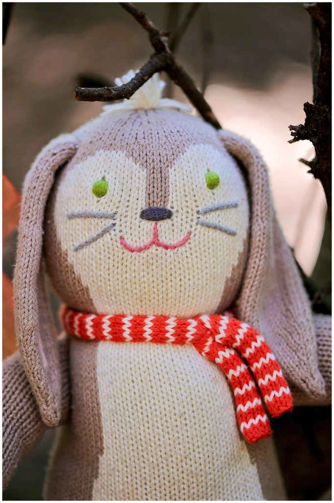 Mr Bunny