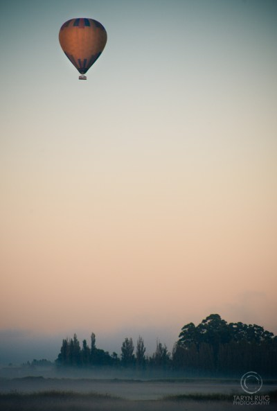 hot air balloon rising in the early morning