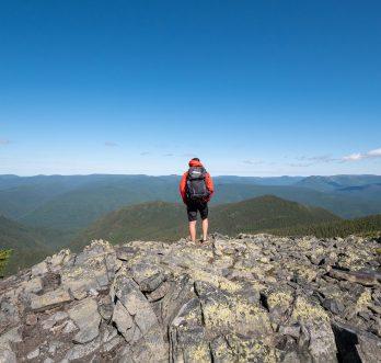 Le sommet du mont Albert