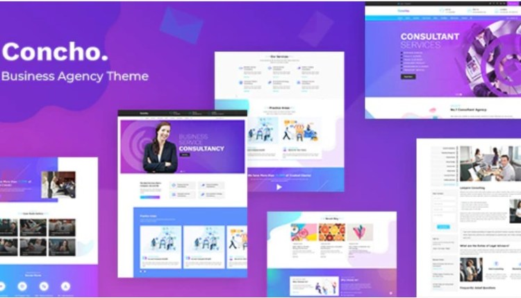 Concho Consulting Services WordPress Theme