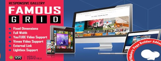 Famous Responsive Image & Video Grid Gallery plugin