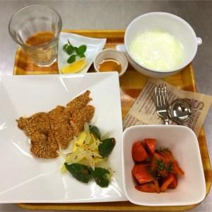 ダイエット入院食
