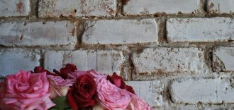 rose wall beyond the brick