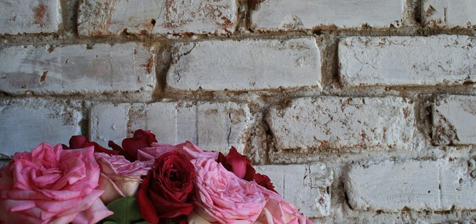 rose wall beyond the brick