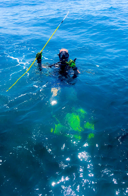 Scuba diver on the surface with spear