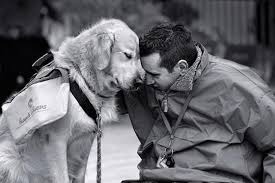 σκύλονέα