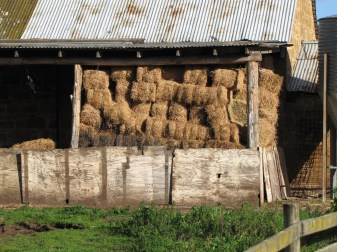 Bales of hay for winter feeding.