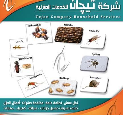 شركة مكافحة حشرات بالمدينة المنورة - جوال