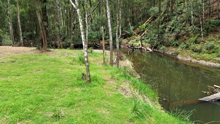 oldina-forest-reserve-1