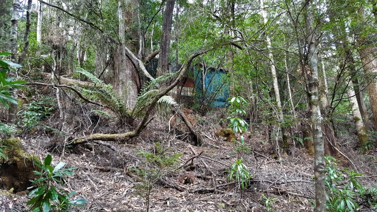 Arthur River Camp Hut