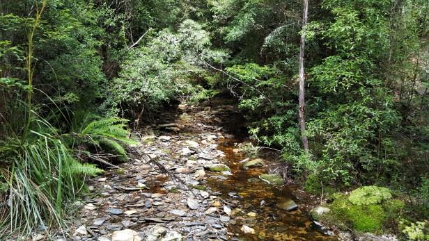 Chuckling Creek