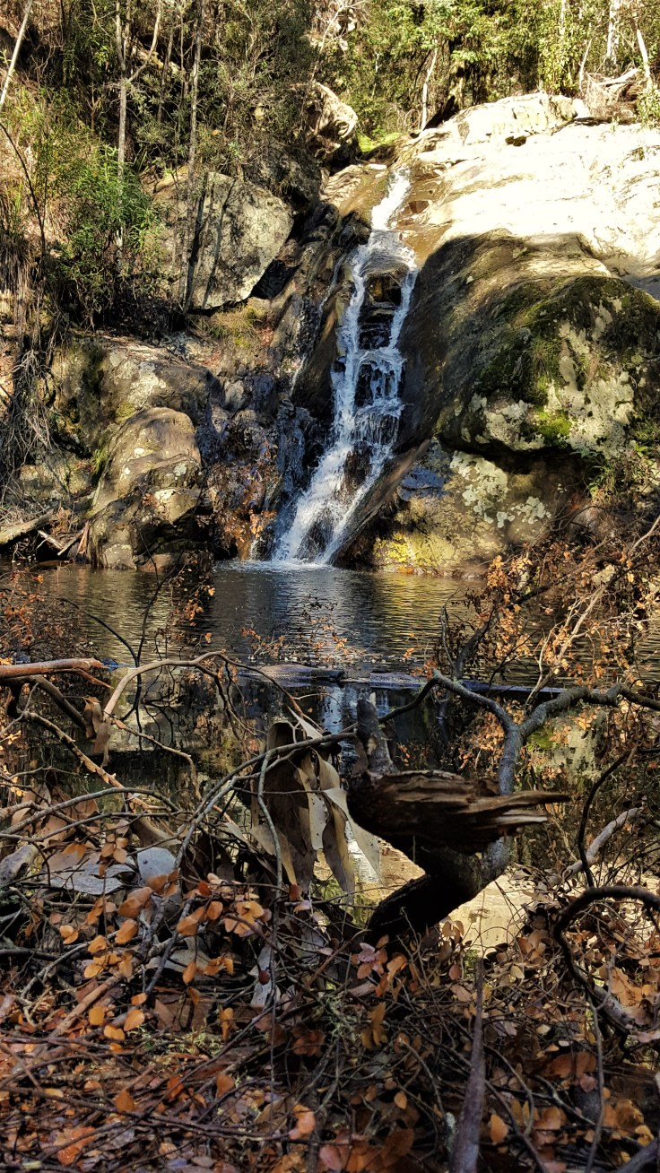 Holwell Falls
