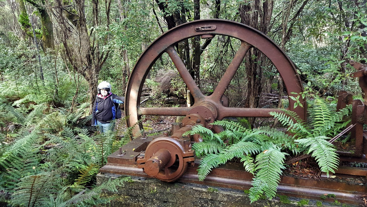 jacinta mill - Upper Reaches of the Black River Part 2. The Mill Site.