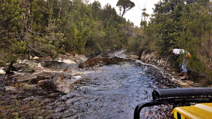 Track Creek