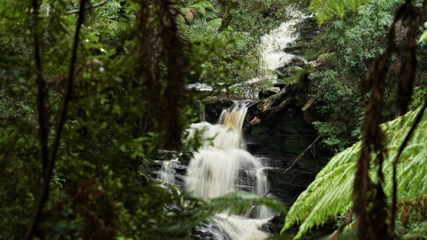 John Lynch Creek Falls