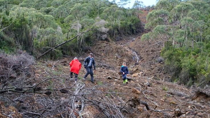 Landslide 1 (2)