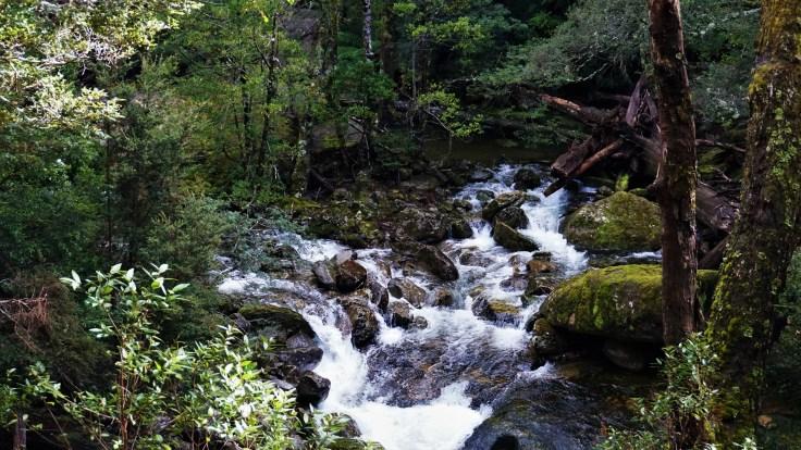 Split in River