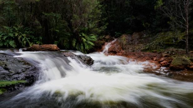 Creeks Merging.JPG