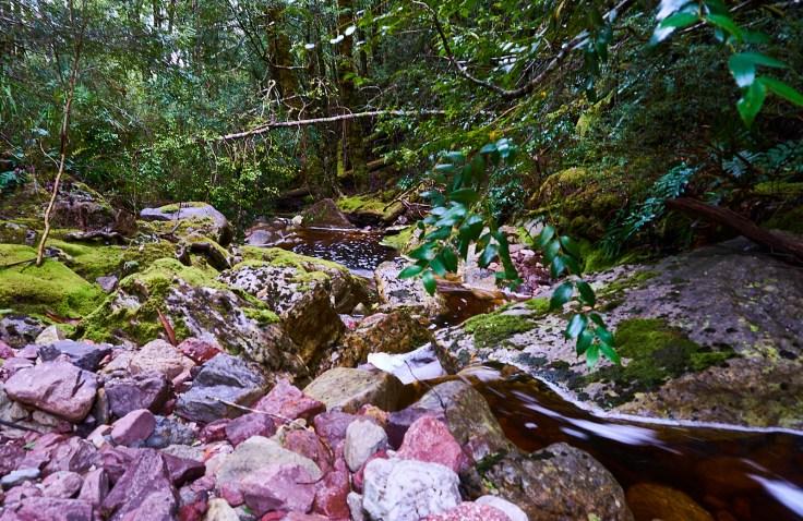 Devonport creek