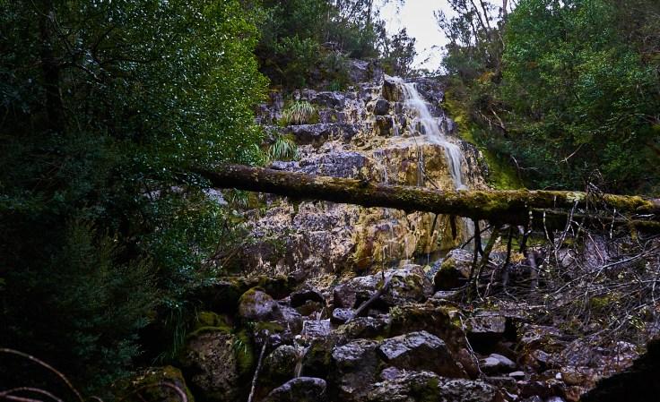 Devonport falls 1