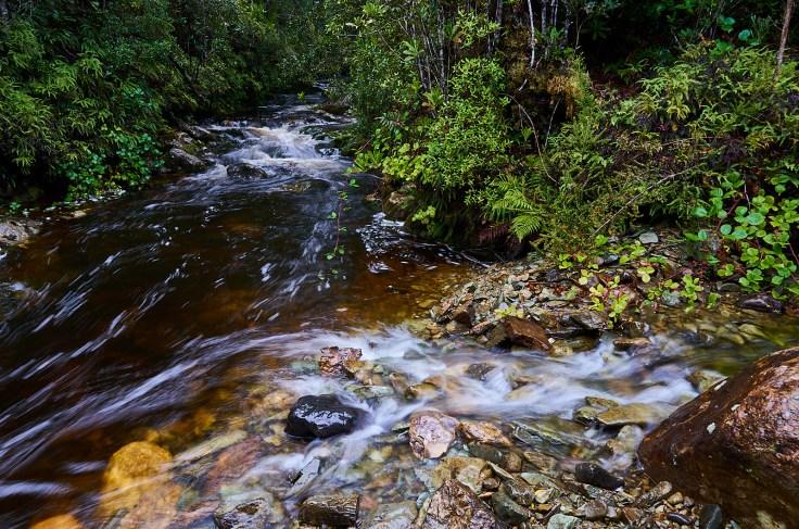 Sterling River 1
