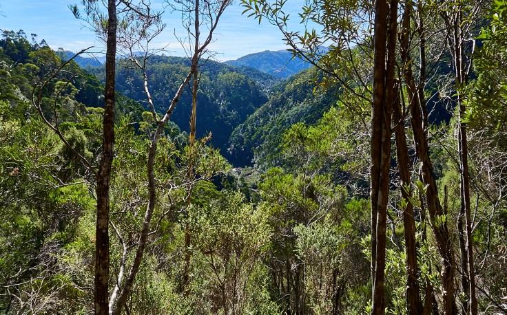 Propsting Gorge 1