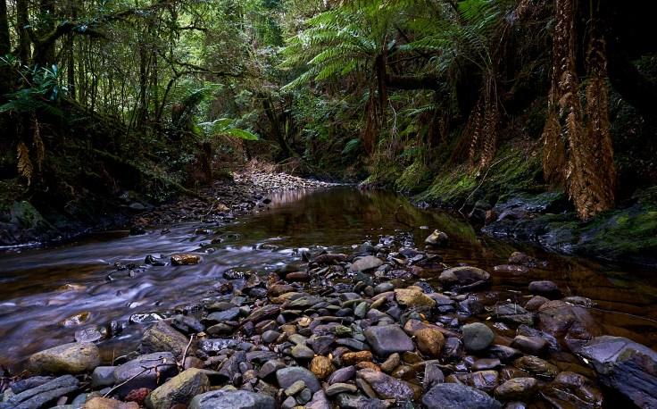 19 mile Creek 1 1