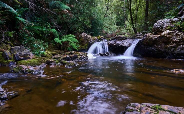 Cann Creek Falls 1