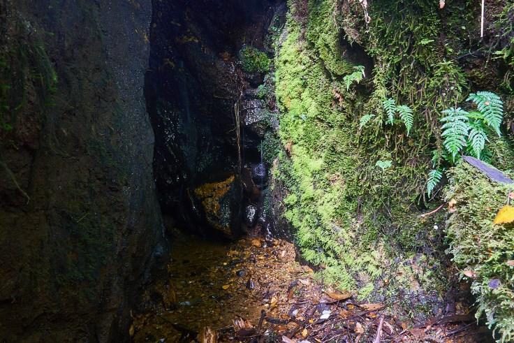 Central Creek Karst 5 1