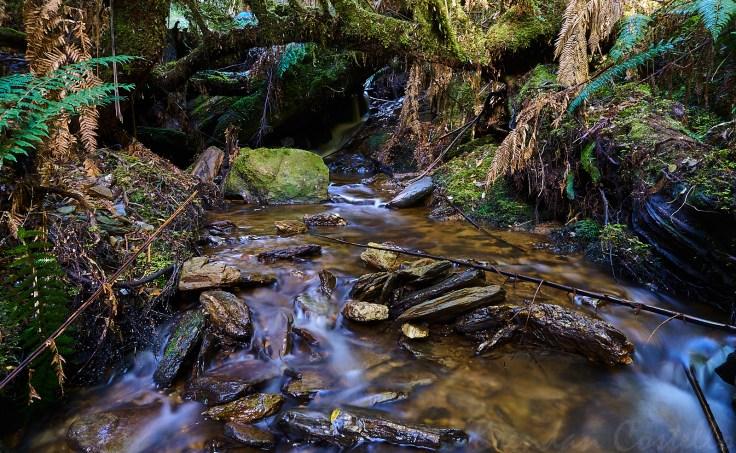 Side Creek 1