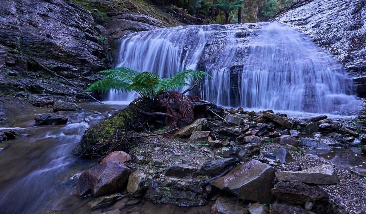 Fern Falls 2 1