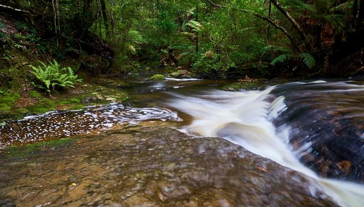 McGowans Creek 1