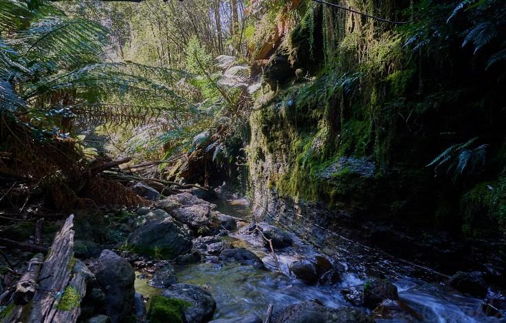 Creek Cliff 1