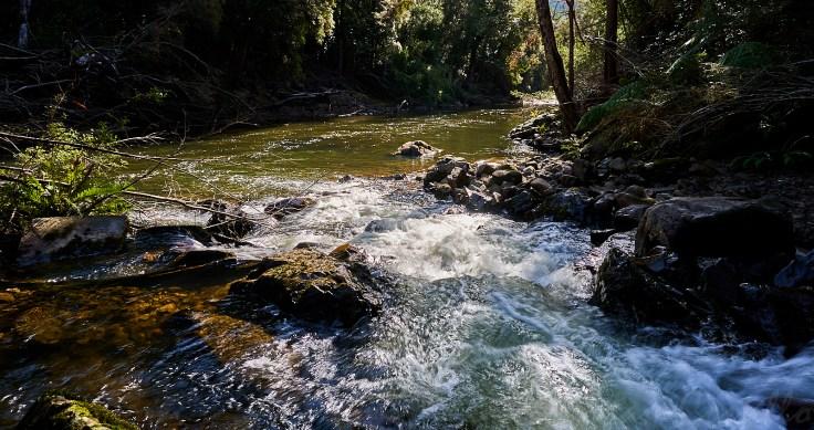 Parrawe Creek Mouth 1