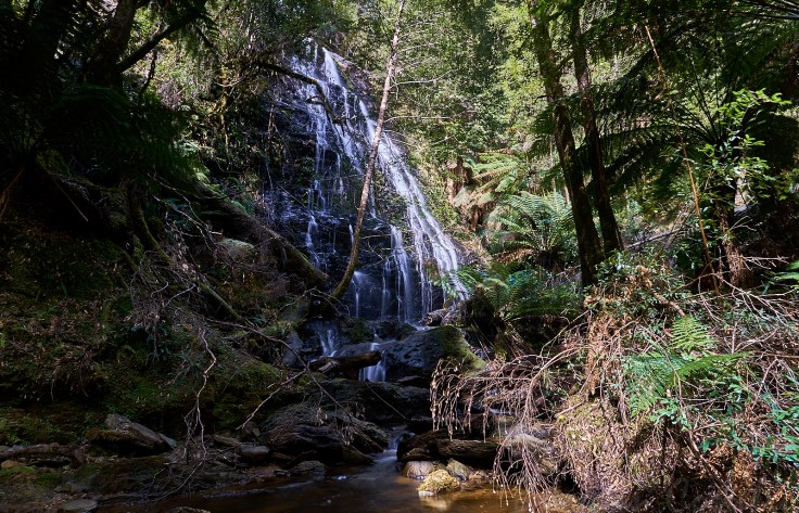 top Section falls 2 1