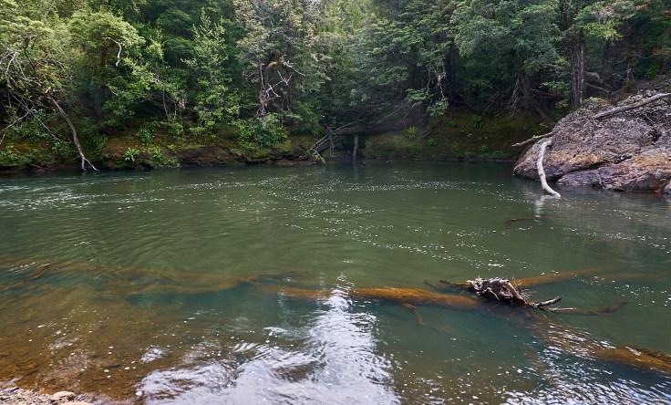 Arthur River 1 1