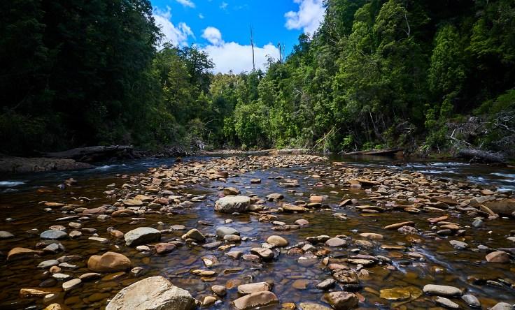Arthur River 2 1
