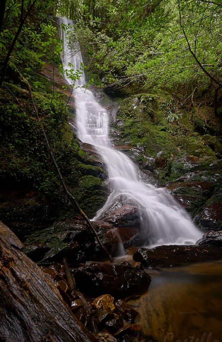 Concert Creek Falls 1