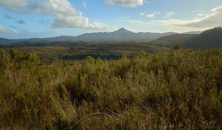 Mt Zeehan 1