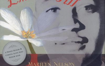 History! Fiction! Poetry! History and Non Fiction and Historical Fiction in Verse Novels