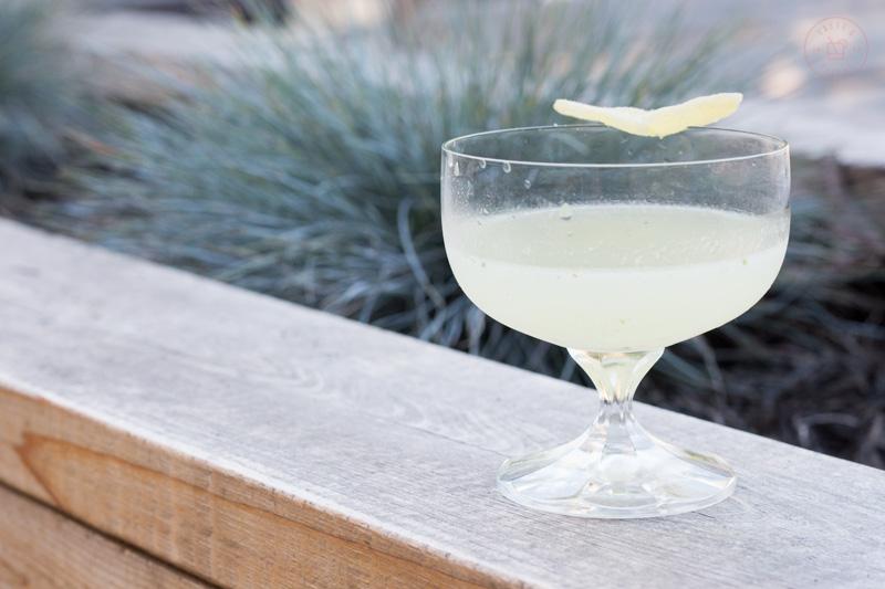 Coriander and Ginger Martini | Taste & Tipple