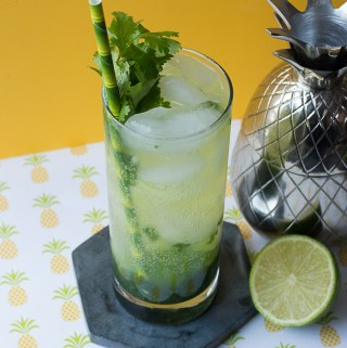Cilantro Mojito   Taste and Tipple