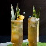 Piña Ginger Fizz | Taste and Tipple
