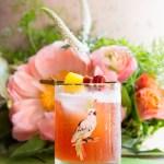 Jungle Bird | Taste and Tipple