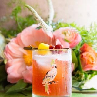 Jungle Bird   Taste and Tipple