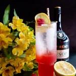 Roffignac | Taste and Tipple